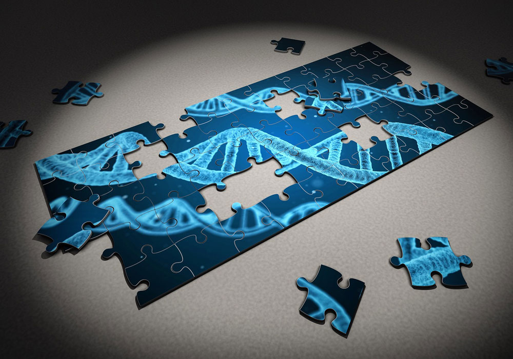 NINR Study Identifies Genes for Fatigue in Cancer Treatment