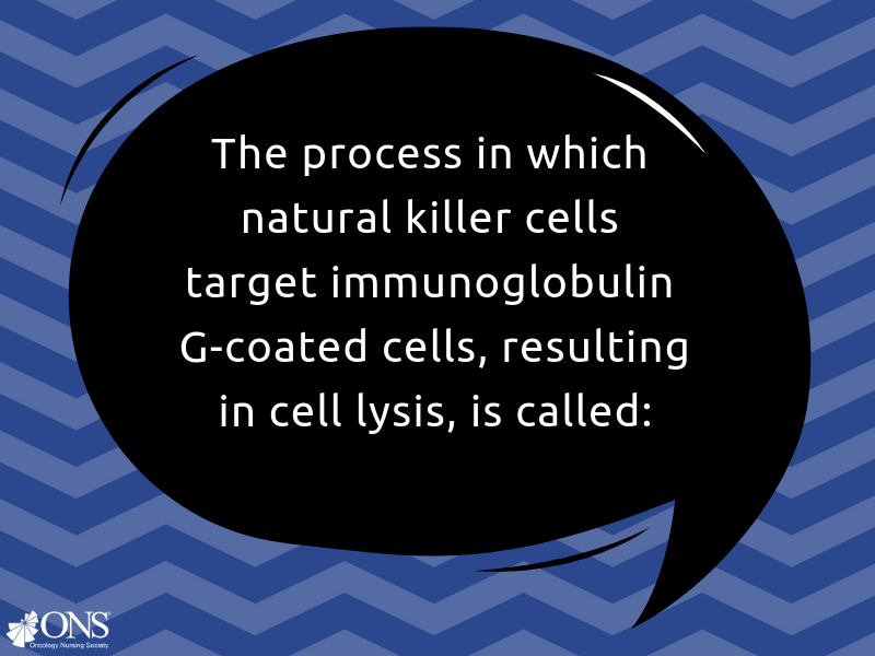 What Is the Process Called When Natural Killer Cells Target Immunoglobulin G-Coated Cells, Resulting in Cell Lysis?
